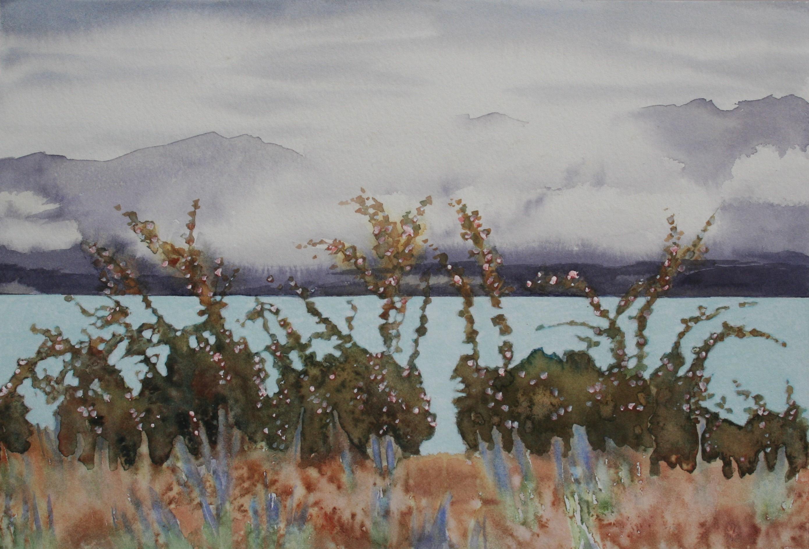 Turquoise Lake 2, New Zealand Series