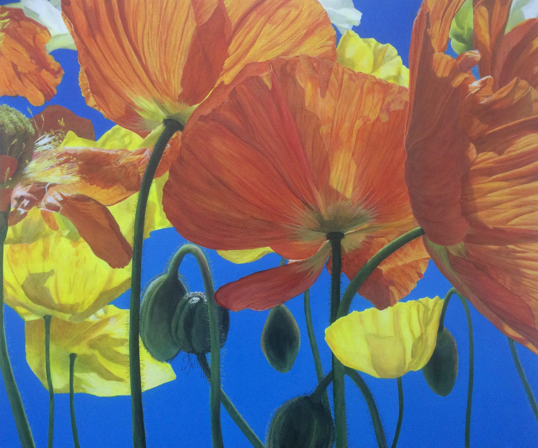 Yellow & Orange Poppies
